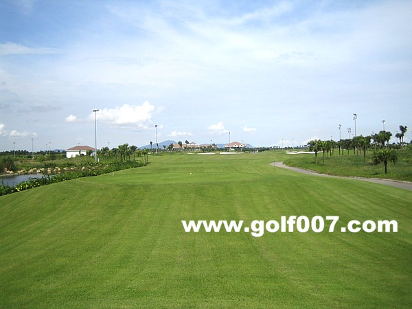 GoldenGulf-H23-2